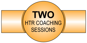 Two online coaching sessions